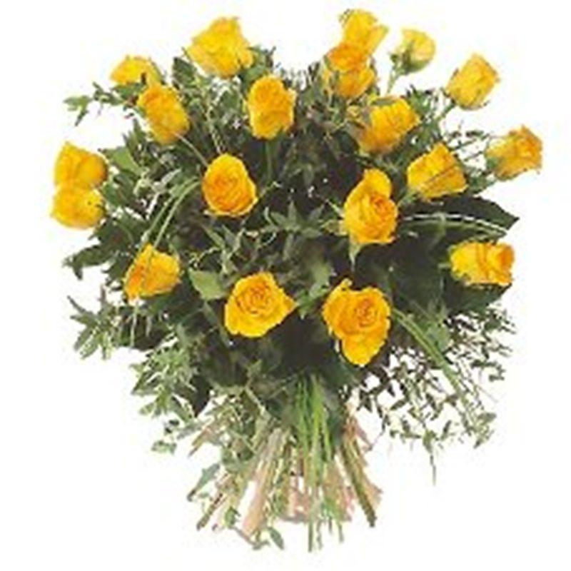 flores sela leon: