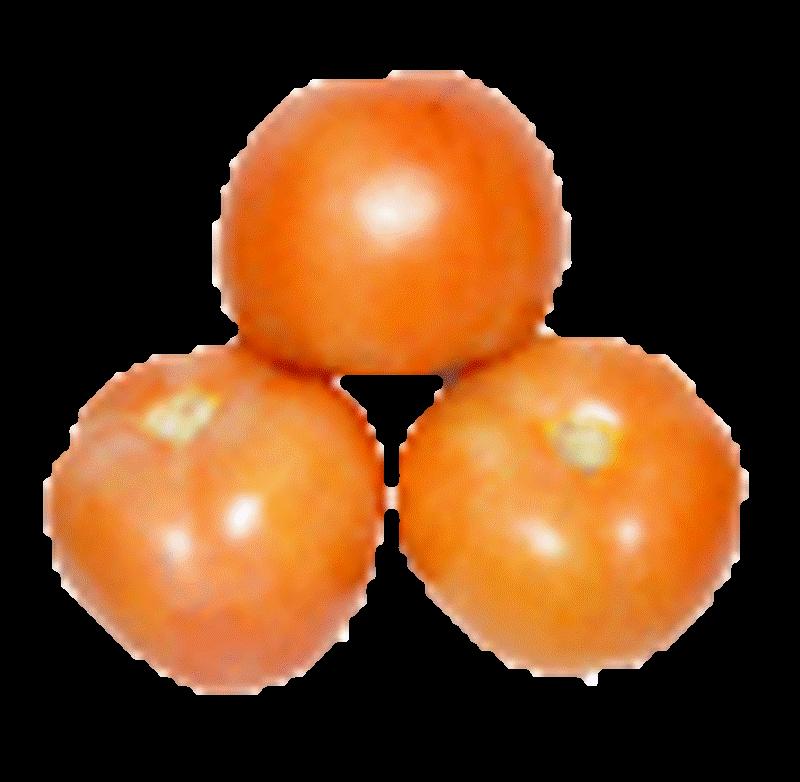 Comprar Tomate ensalada
