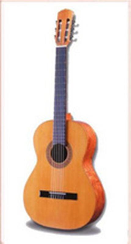 Comprar Guitarra