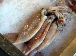 Comprar Calamares