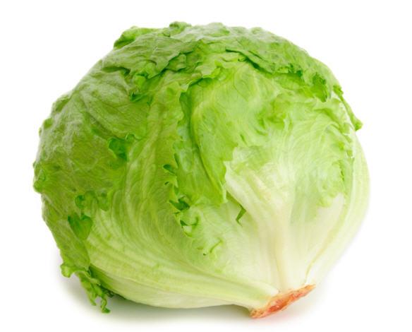 Comprar Lettuce