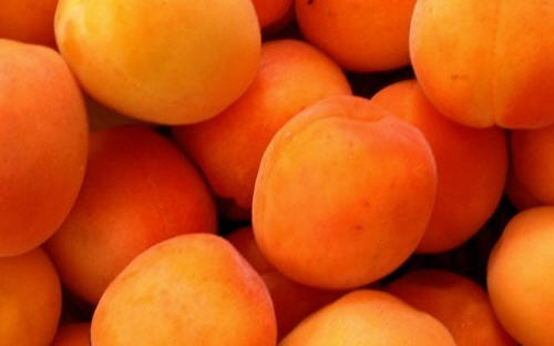 Comprar Apricots