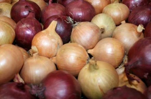 Comprar Onions