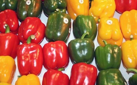 Comprar Peppers