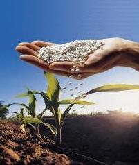 Comprar Fertilizantes