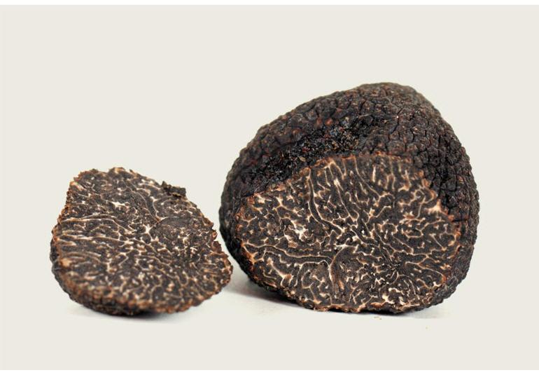 Comprar Trufa perigord / tuber melanosporum