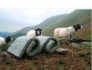 Aislante de lana de oveja