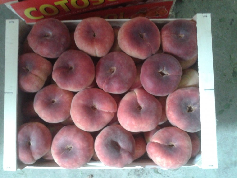 Comprar Плоский персик
