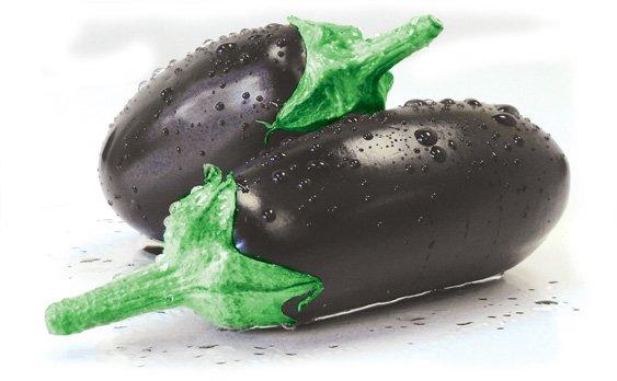 Comprar Eggplant