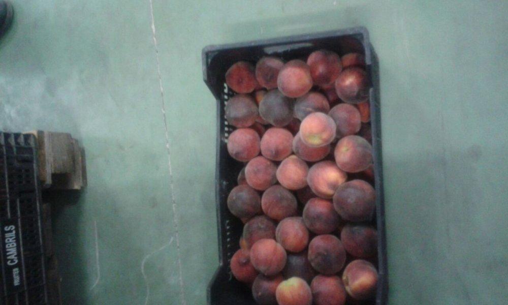 Comprar Красный персик из Испании