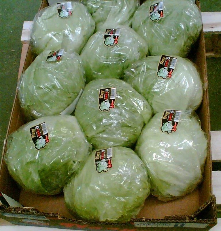Comprar Продаем салаты