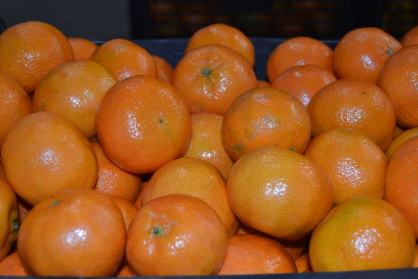 Comprar Naranjas frescas