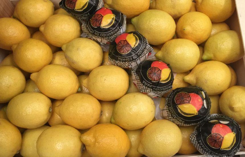 Comprar Limón al por mayor