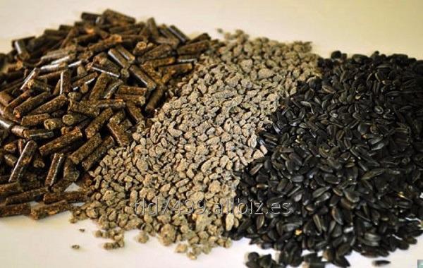 Comprar Harina de semillas de girasol ( Tarta pipas de girasol )
