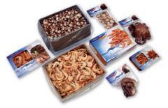 冷冻海产品