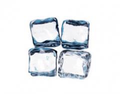 Bolsa de Congelación