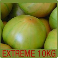Caja de tomates para ensalada 10 Kg.