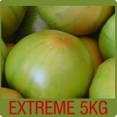 Caja de tomates para ensalada 5 Kg.