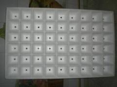 Bandejas de 54 olivos