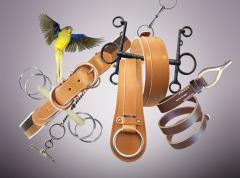 Cinturones para damas