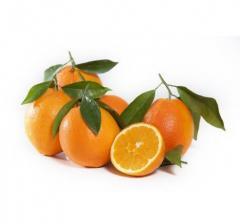 Naranja Navelina (de mesa)