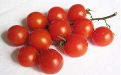 Cherry-tomate