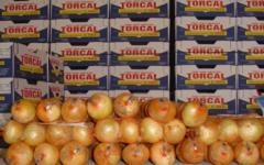 Cebolla Buti (1 Kg.)
