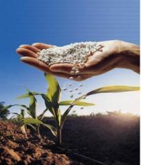 Fertilizantes para el campo