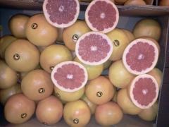 Продаем грепфрут