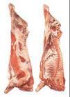 Carne producción de vacuno