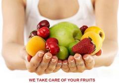Фасовочно-упаковочные линии для фруктов и овощей от Италиянского производителя