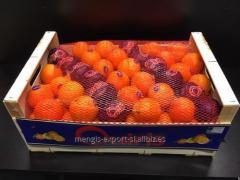 Mandarinas y Clementinas