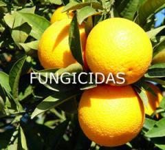 Fungicida específico contra Psoriasis, lepra y
