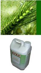 Herbicida selectivo de naturaleza hormonal