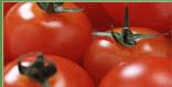 Pepino, pimiento, tomate