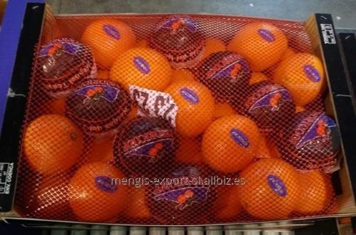 naranjas_al_por_mayor_en_espaa