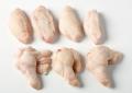 Ala de pollo 2 falanges separadas
