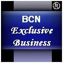 BCN Exclusive Business, Empresa, Barcelona