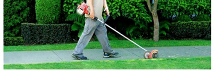 Pedido Servicios de mantenimiento de jardines