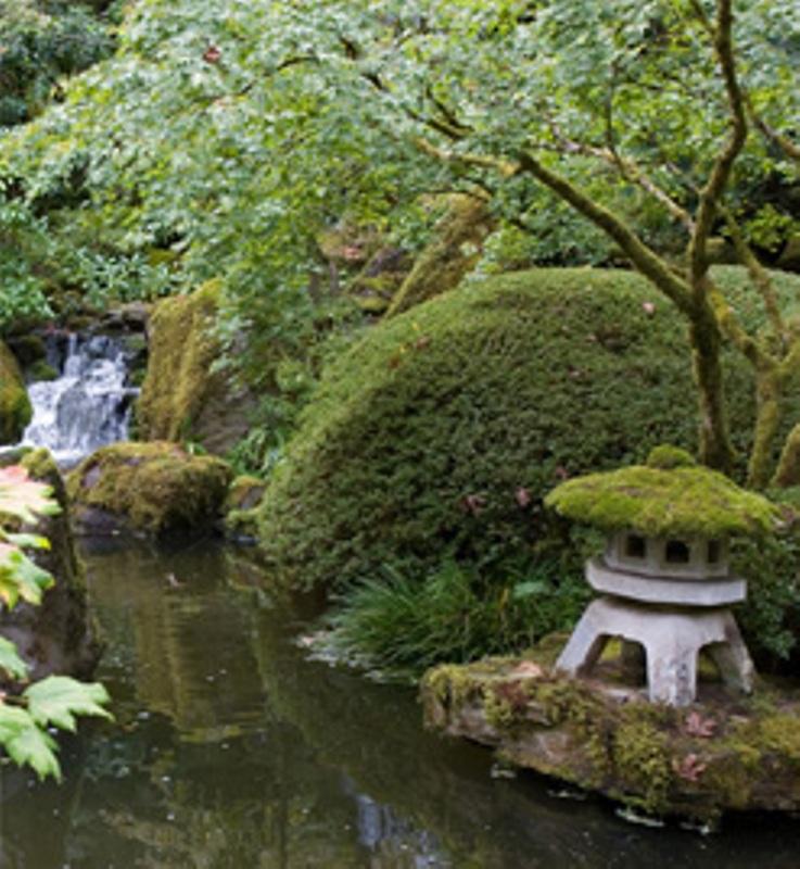 Pedido Mantenimiento y conservación de jardines, comunidades