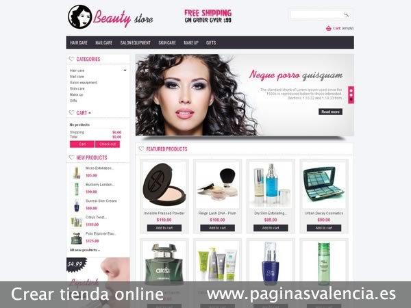 Pedido Diseño de tienda online en Valencia