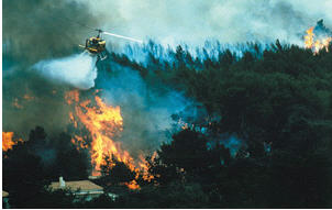 Pedido Servicios integrales en la lucha contra incendios forestales
