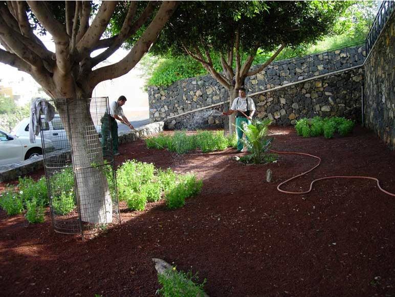 Pedido Jardinería