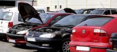 Comercio al por mayor de piezas de recambio para automóviles