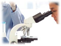 Servicios de laboratorio analítico
