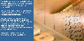 Servicios de area contable